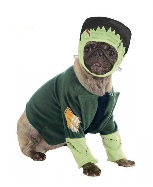 Disfraz de Frankenstein Mascota