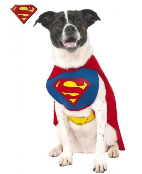Disfraz de Supermán para Máscota
